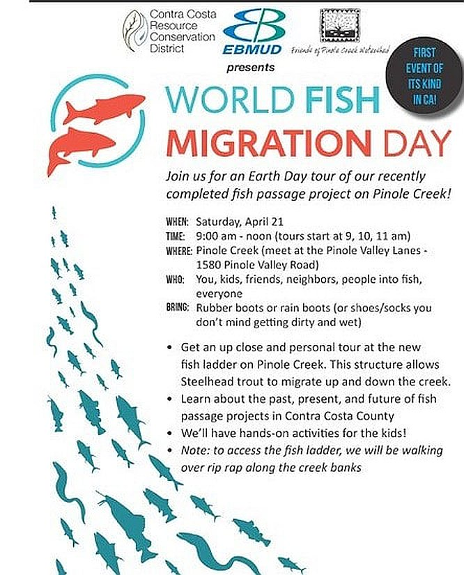 FishMigrationDay_2018